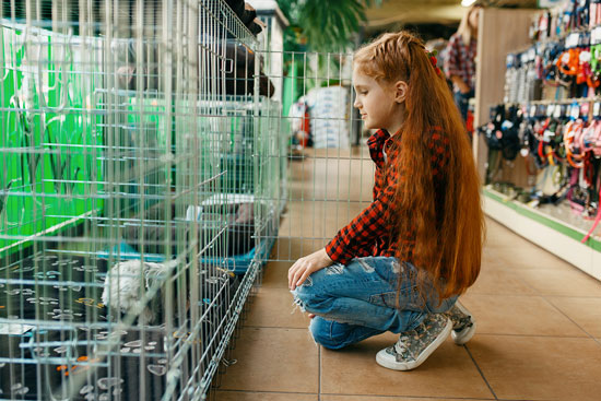 Tiendas de animales en Sevilla