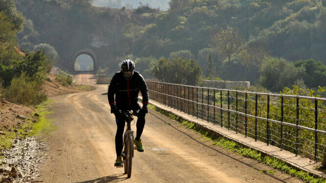 Bicycle routes in Seville